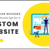 As a reliable website development company, we can assure you that relying on template-based websites available online is surely not going to set your brand apart from your competitors. This blog lists five major reasons why it is essential to have a custom website.