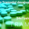 Buy Tramadol Tablets to Manage Pain Effectively Tramadol is a synthetic opioid drug employed to treat moderate to severe pain. Trade names of tramadol are Con Zip and Ultram. This medication is sol…