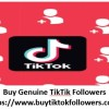 Do you want to become a TikTok celebrity? More TikTok likes help you to get attention from the audience and making an impact on the platform. You can grow your brand and have more success for your profile. Get our buy TikTok likes service to boost your brand's popularity.