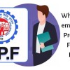 EPF is one of the main savings schemes for almost all working people in the private sector. It can be used when an employee is temporarily or no longer fit to work or at retirement.