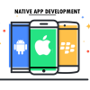 Get to know all about the merits of Native Mobile App Development beginning from attracting customers to product branding exclusively.