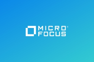 Micro Focus Big Data Services help you in determining the assets and liabilities that exis...