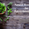 Natural Remedies for Polycythemia Vera that help improve symptoms and prevent complications. Natural Treatment for Polycythemia Vera managing thickened blood.