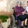 Seeking Caregiving Companionship services? Care Xpertz have you covered with our senior socialization and caregiver companionship services. Contact us now!