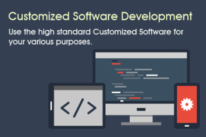 Tree Multisoft is the Best Custom Software Development Company in Dehradun, Provides Softw...