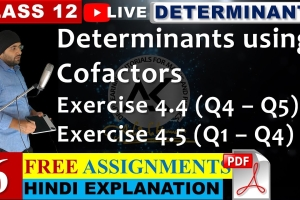 Understand the meaning of determinants using co-factors with NCERT Solutions for Exercise ...