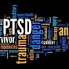VA Disability Rating for PTSD can reach 100% or TDIU. Call for a free case review to determine if you are eligible for VA 100% or TDIU. Contact Us: https://www.disabilityhelpgroup.com/va-disability-rating-for-ptsd/