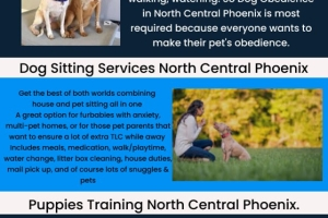 We all know very well that pets always sit anywhere. So people like to find the best servi...