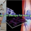 Wonder why to go with stem cell therapy for knee pain? You would be surprised at how modern stem cell injections for knees can restore mobility while reducing pain.