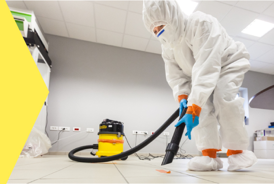 If you want to make your home clean and beautiful. Then you should choose Servicemaster Re...