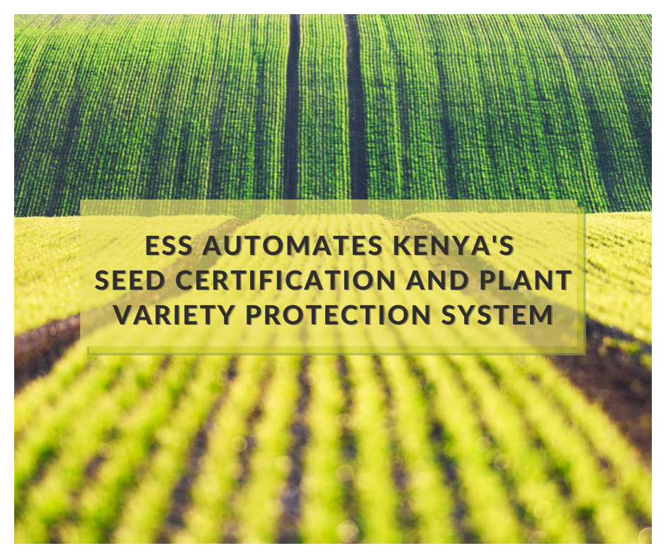 Improved variety and quality of seeds are critical for productive agriculture, which is th...
