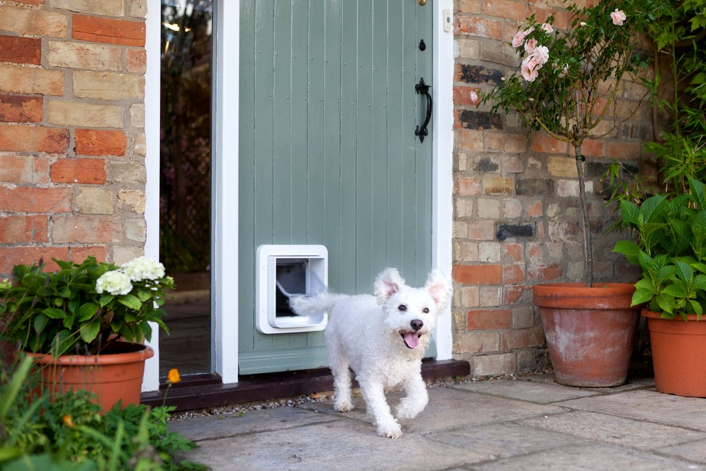 In these situations, having a special door that your pet can use by itself is the most con...