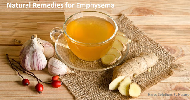 Natural Remedies for Emphysema can improve life expectancy. Natural Treatment for Emphysem...