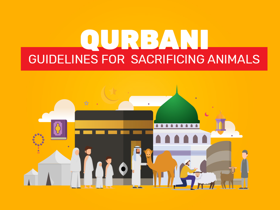 Qurbani is an important and inevitable part of Eid ul Adha. Hajj, which is the fifth pilla...