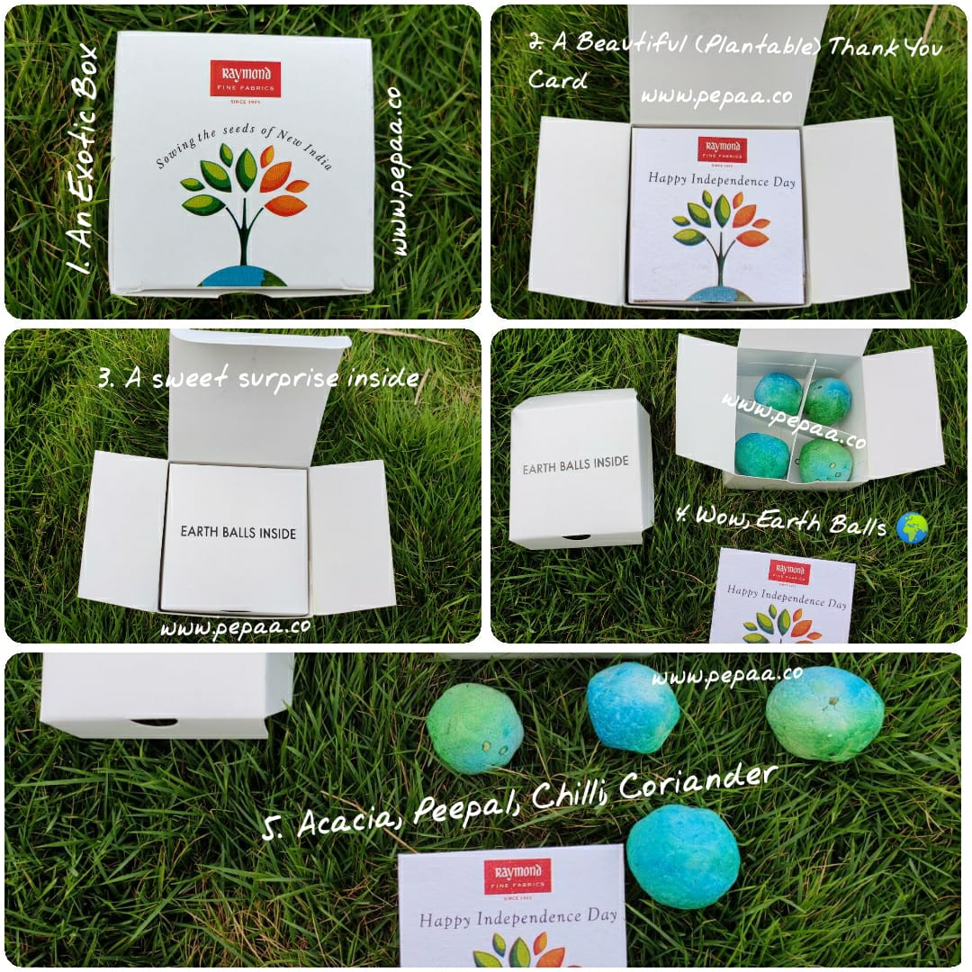 seed balls are Plantable ,Earth seed bombs are made from 100% handmade paper and consists ...